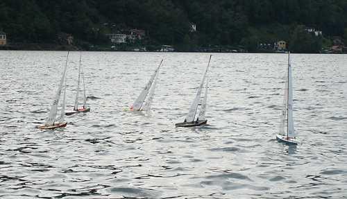 regatta_2.jpg